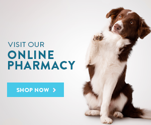 Our Online Pharmacy